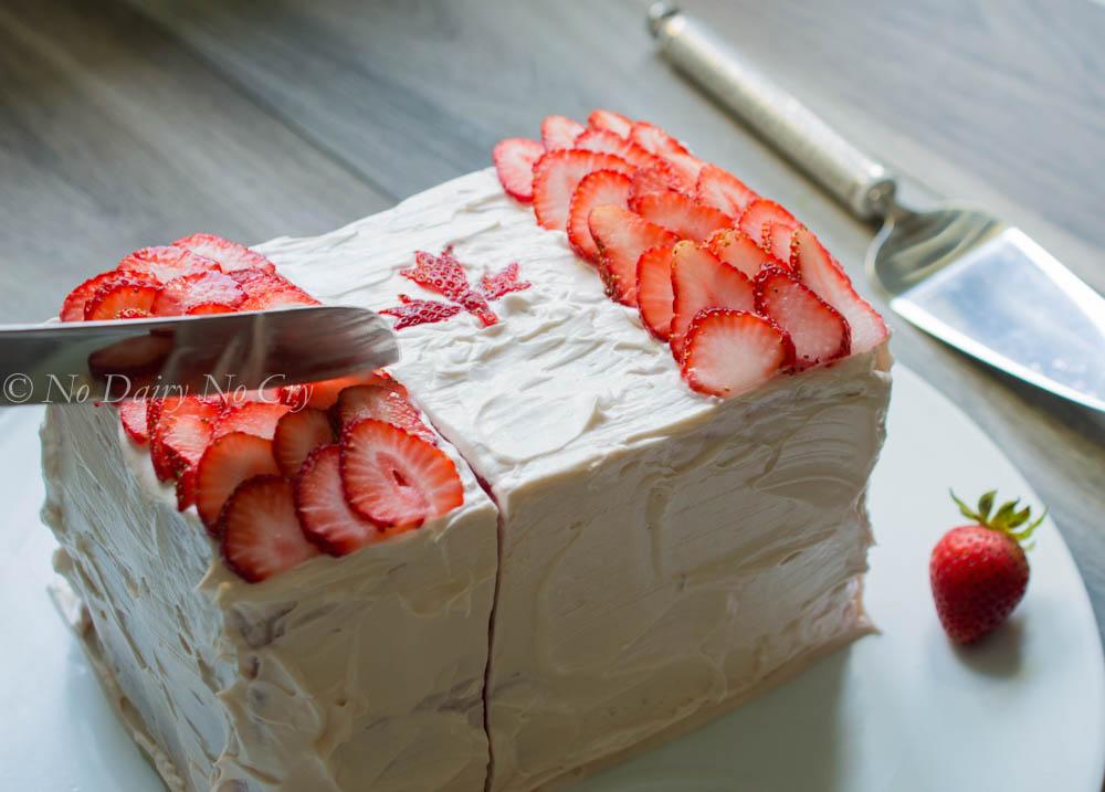 watermelon canada cake4